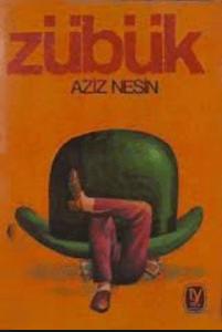 Zübük Romanı