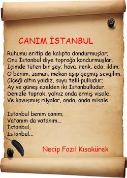 Canım İstanbul Şiir İncelemesi