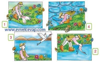 Bir Göl Nasıl Bingöl Oldu 3. Etkinlik Cevabı