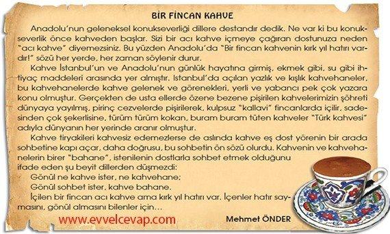Türk Çayı 7. Etkinlik Sorularının Cevabı