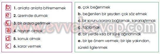 Anadolu'da Konukseverlik Gelenekseldir 2. Etkinlik Cevabı