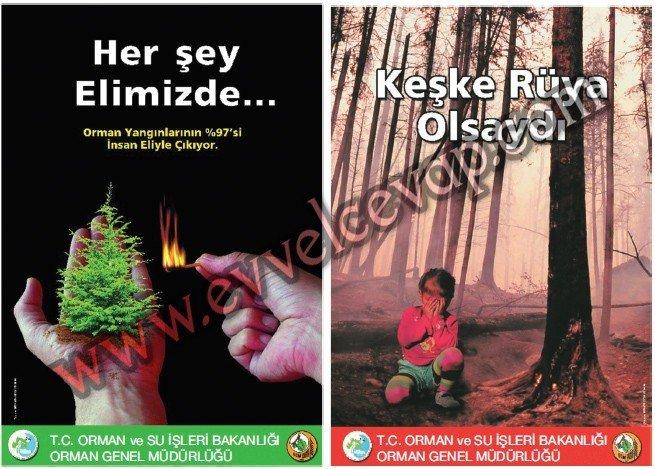 Orman Bize Küstü 6. Etkinlik Cevabı