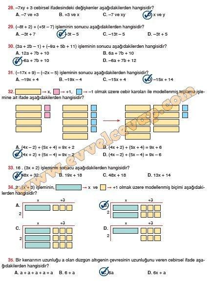 6-sinif-sevgi-yayinlari-matematik-ders-kitabi-sayfa-197-cevabi