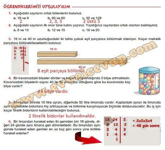 6-sinif-sevgi-yayinlari-matematik-ders-kitabi-sayfa-43-cevabi