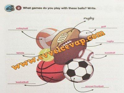 7-sinif-pasifik-yayinlari-ingilizce-calisma-kitabi-3-unite-sports-cevaplari