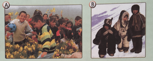 8-unite-uzaktaki-arkadaslarim-neler-ogrendik-cevaplari