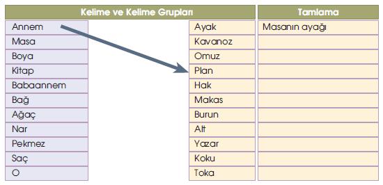 5-sinif-meb-yayinlari-turkce-kitabi-perseid-goktasi-yagmuru-5-etkinlik-cevaplari