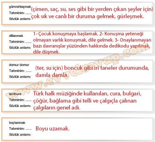 8-sinif-dikey-yayinlari-turkce-kitabi-agac-sevgisi-1-etkinlik-cevaplar