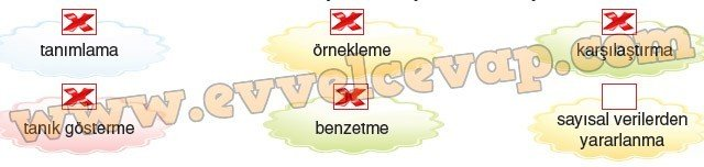 8-sinif-dikey-yayinlari-turkce-kitabi-agac-sevgisi-10-etkinlik-cevaplar