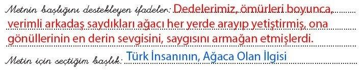 8-sinif-dikey-yayinlari-turkce-kitabi-agac-sevgisi-3-etkinlik-cevaplar
