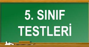 5. Sınıf Testleri Çöz