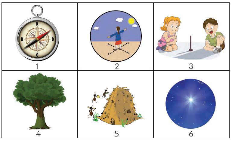 3. Sınıf Meb Yayınları Hayat Bilgisi Ders Kitabı Sayfa 164Cevabı