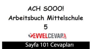 5. Sınıf Almanca A2-1 çalışma kitabı sayfa 101 cevapları meb yayınları