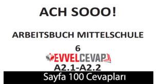 6. Sınıf Almanca A2-1 ve A2-2 çalışma kitabı sayfa 100 cevapları meb yayınları