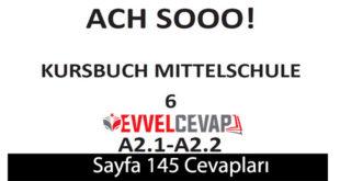 6. Sınıf Almanca A2-1 ve A2-2 ders kitabı sayfa 145 cevapları meb yayınları