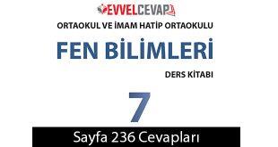 7. Sınıf Meb Yayınları Fen Bilimleri Ders Kitabı Sayfa 236 Cevabı