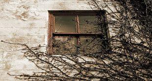 Gün Eksilmesin Penceremden Şiir Tahlili