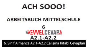 6. Sınıf Almanca A2.1-A2.2 Çalışma Kitabı Cevapları Meb Yayınları