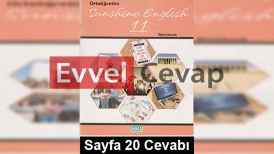 11. Sınıf İngilizce Cem Yayınları Çalışma Kitabı Cevapları Sayfa 20